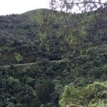 Reserva Científica de Ébano Verde, un paraíso terrenal