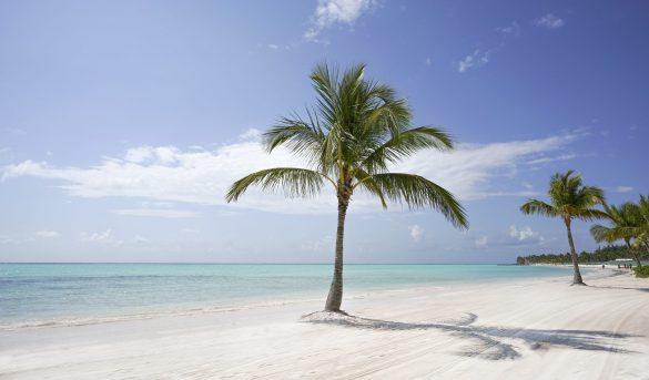 Punta Cana supera a Cancún como favorito para viajes en Acción de Gracias
