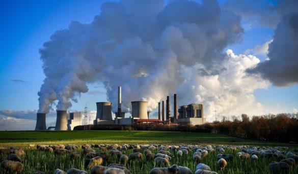Informe OMT mide emisiones de carbono para el turismo