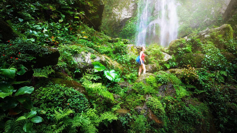 Turismo, imán de grandes promesas