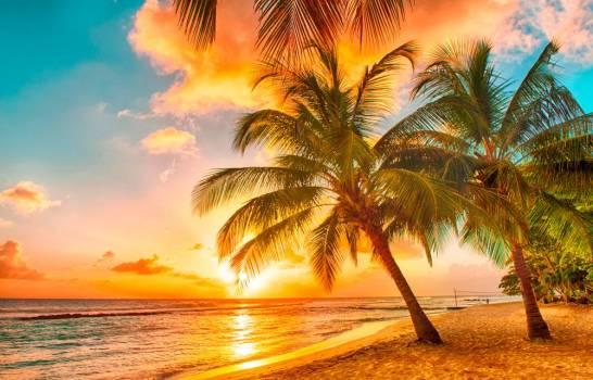 Seis de las mejores playas de todo el mundo: maravillas naturales
