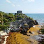 Sargazo: países europeos se suman a la lucha ante impacto a hoteleros