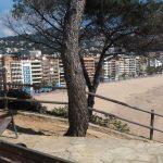 En España plantean Impulso del turismo local después de la pandemia