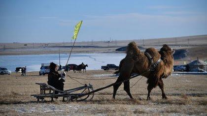 Novedades en la Feria de Invierno de Naadan, Mongolia China