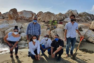 The Ocean Club Group realiza siembra de mangles en Sosúa y presentan Proyecto del Rompeolas