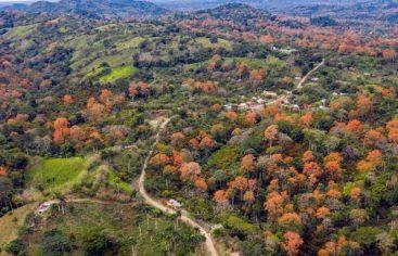 Vicentillo, un valle encantado y capital del ecoturismo en el Este